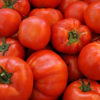 beefsteak tomato seeds